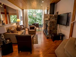 Rainbow Lodge #5 - Whistler vacation rentals