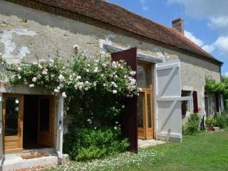 "MAGNY -COURS ""LA THIBAUDE"" 58240 LIVRY - BOURGOGNE - Magny-Cours vacation rentals"