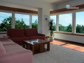 Apartment/Flat in Matosinhos, at Cristina & John's place - Matosinhos vacation rentals