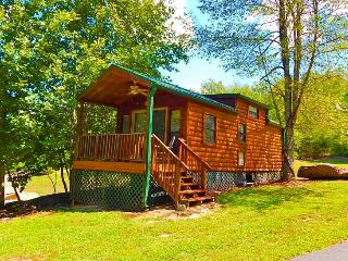 SUMMER SPECIAL! Rent 2 weekdays, get 1 free! - Edneyville vacation rentals