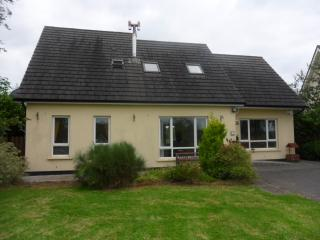 Nice Bungalow with Internet Access and Satellite Or Cable TV - Belturbet vacation rentals