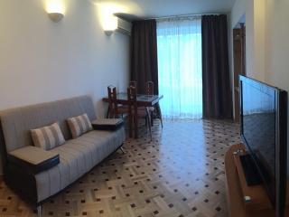 Cozy 2 bedroom Samara Condo with Internet Access - Samara vacation rentals
