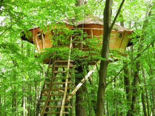 """Cabanes de la Tour """"ILEX"""" - Lardy vacation rentals"""