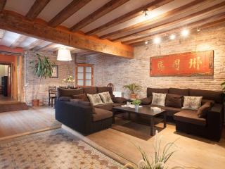 SHANGHAI BORNE, 4bdrs, up to 9! - Barcelona vacation rentals