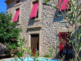 Demeure vigneronne de charme B&B CARCASSONNE - Blomac vacation rentals