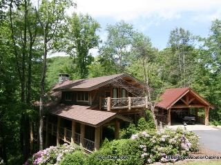 Red Stag Lodge*Eagles Nest Luxury Home*4 Levels - Banner Elk vacation rentals