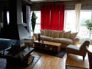 DAS LOFT - Montreal vacation rentals
