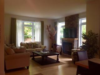 Beautiful Condo with Internet Access and A/C - Bromont vacation rentals