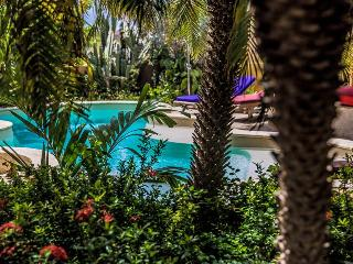 Apartment Dolfein in Ocean View Villas - On the ground floor with private patio - Kralendijk vacation rentals