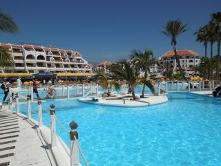 Apartment Parque Santiago 3 - Studio - Playa de las Americas vacation rentals