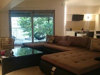 Très beau loft de 115M2  au centre de Bruxelles - Saint-Gilles vacation rentals