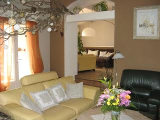 Nice House with Internet Access and A/C - Maubec vacation rentals