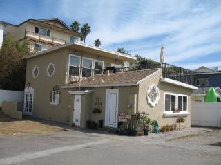 Ocean Views, Private Beach House - Oceanside vacation rentals