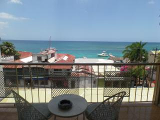 Nice Montego Bay Studio rental with Internet Access - Montego Bay vacation rentals
