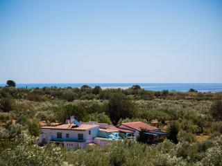 BEAUTIFUL VILLA DELTA DEL EBRO VILLAFELICHE - Camarles vacation rentals