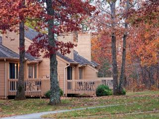 Nice Condo with Deck and Internet Access - Fairfield Glade vacation rentals