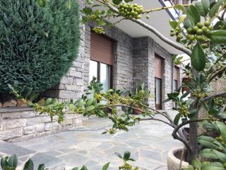 1 bedroom Condo with Deck in Aosta - Aosta vacation rentals