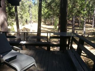 Secret Meadows Retreat-6 miles from Yosemite-Relax - Yosemite National Park vacation rentals