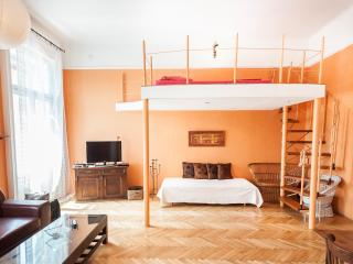 Great cheerful apartment,  beautifully decorated - Budapest vacation rentals