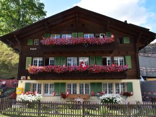 Nice Condo with Deck and Internet Access - Grindelwald vacation rentals