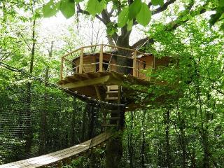 """Cabanes de la Tour """"Les Rochers"""" - Lardy vacation rentals"""