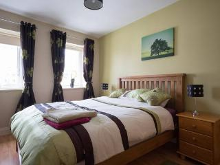 Cosy apartment in Galways West End - Galway vacation rentals