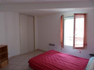 Appartement 83m2 Allées Paul-Riquet centre Beziers - Béziers vacation rentals
