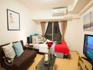 Comfortable 1 bedroom Condo in Shibuya - Shibuya vacation rentals