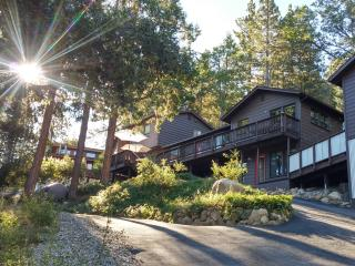 Family Retreat - Privacy, Views, Pet-Friendly - Idyllwild vacation rentals