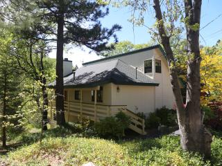 House of Two Bears - Lake Arrowhead Charmer - Lake Arrowhead vacation rentals