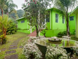 Sierra Palms Villa in the rainforest, Puerto Rico - Naguabo vacation rentals