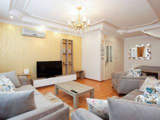 Majestic Dublex,Central & Large,Modern Concept ! - Istanbul vacation rentals