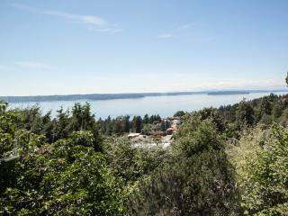 West Seattle Private, Quiet Home w/Dazzling View and Air Conditioning - Seattle vacation rentals