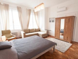 Perfect 4 bedroom Condo in Budapest - Budapest vacation rentals