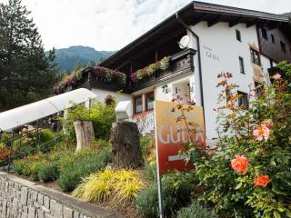 Frühstückspension Gulla, auch für Selbstverpfleger - Neustift im Stubaital vacation rentals