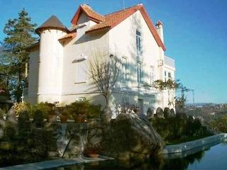 Chateau with private Pool envolved by Nature - Vieira do Minho vacation rentals