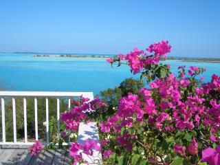 Escape to  oasis of peace, quiet, exquisite beauty - Great Exuma vacation rentals