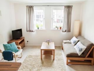 One Bedroom Flat in Nice Location - Edinburgh vacation rentals