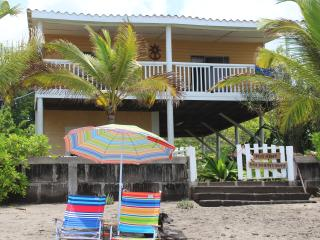 Nice 2 bedroom Managua House with Deck - Managua vacation rentals