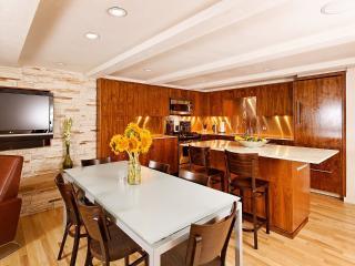 Contemporary Cottonwood Family Condo - Aspen vacation rentals