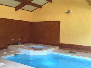 Gd F2 + piscine intérieure chauffée sous pinèdes - Cournonterral vacation rentals
