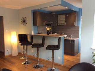 Modernes Appartement, zentral, ruhig, 5min zur Kathedrale, Kingsizebett, Aufzug - Strasbourg vacation rentals