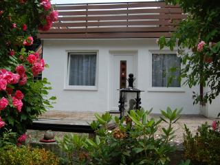 CHERRY GARDEN Apartment - 2 Rooms 60 m2 + Terrasse - Bad Nauheim vacation rentals