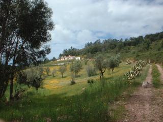 Rota Vicentina, Cerra da Vigia - Sao Luis vacation rentals