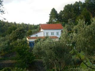 Nice Gite with Internet Access and Outdoor Dining Area - Oleiros vacation rentals