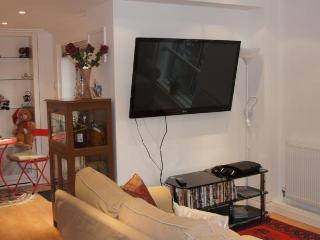 Leicester Square Apartments - London vacation rentals