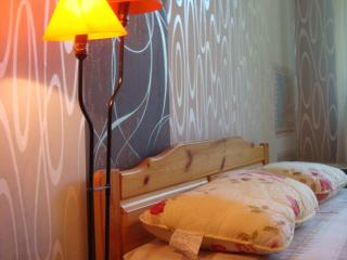 a nice 2-room appartement in Tallinn - Tallinn vacation rentals