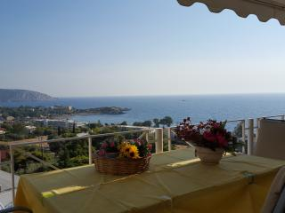 the best view of the sea in Saronida - Saronida vacation rentals