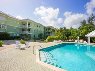 Wonderful Condo with Internet Access and Microwave - Old Man Bay vacation rentals