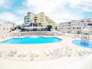 apartment Torviscas Playa - Playa de las Americas vacation rentals